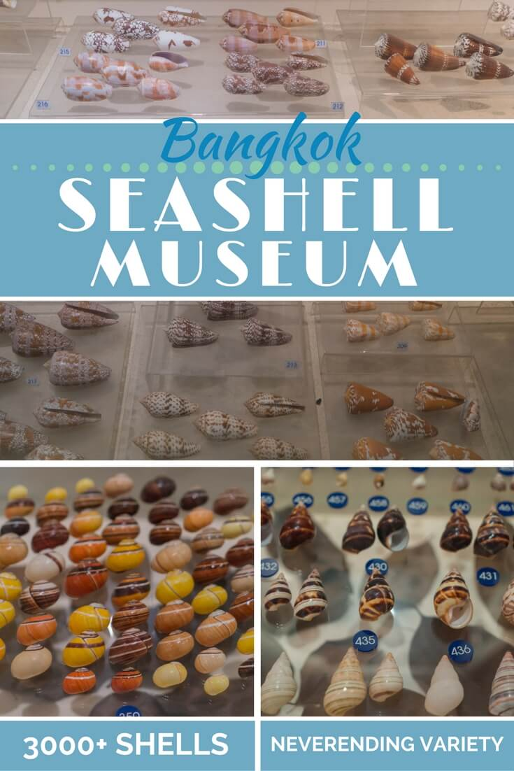 Photo journey and travel guide for the #Bangkok #Seashell Museum in #Thailand #travel #travelguide #exploremore
