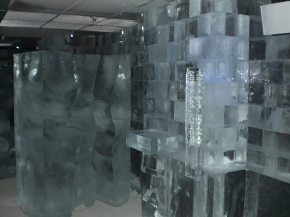 Ice sculptures at Ice Bar Tokyo in Japan