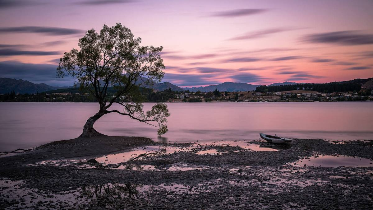 Lake Wanaka and That Wanaka Tree in New Zealand