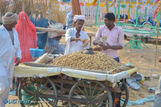 Peanut vendor at the Pushkar Camel Fair 2015