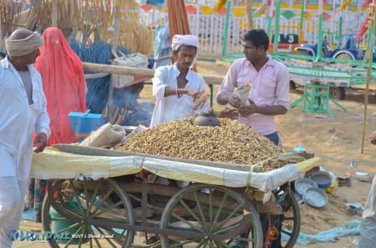 Peanut vendor at the Pushkar Camel Fair 2015