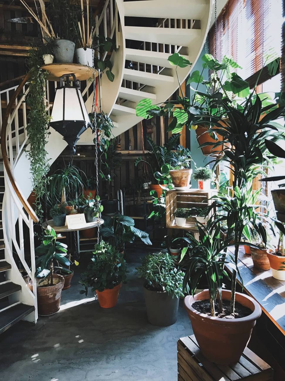 Indoor garden in Berlin, Germany