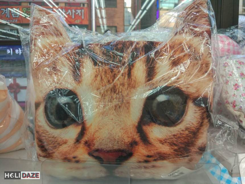 Korean Cat Pillow