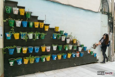 Potted plant 3D street art at Changdong Art Village in Masan, Korea