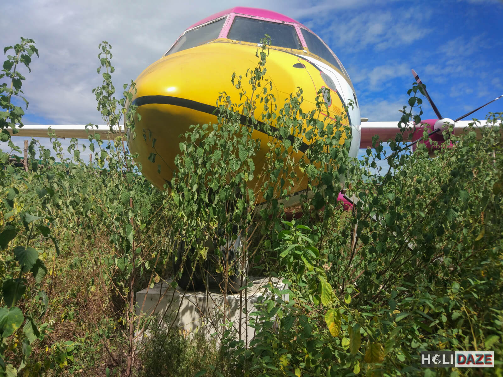 Found this Nok Air plane in the woods near the beach in Rayong, Thailand