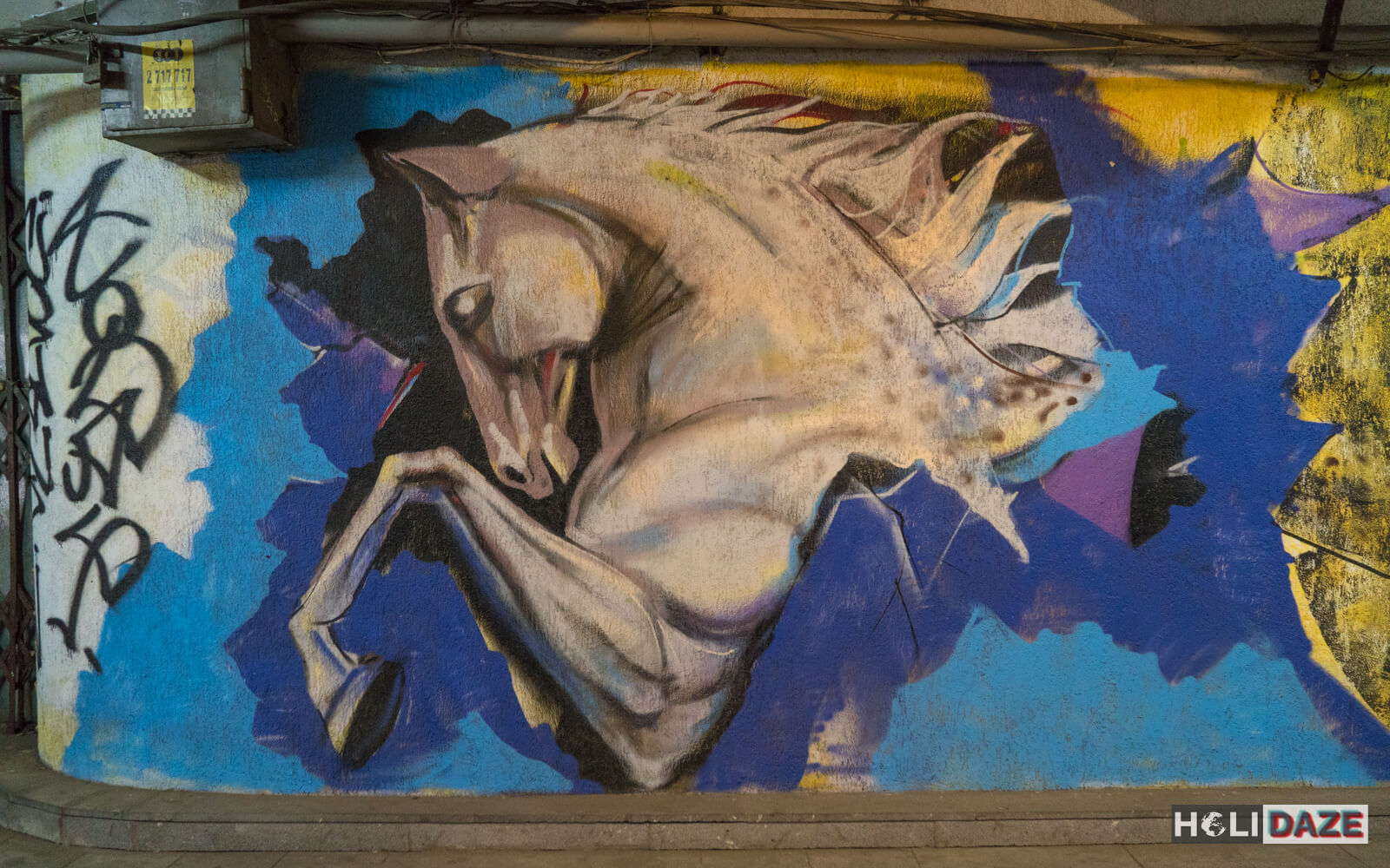 Underground Tbilisi street art at Nikoloz Baratashvili Bridge