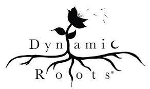 dynamic roots