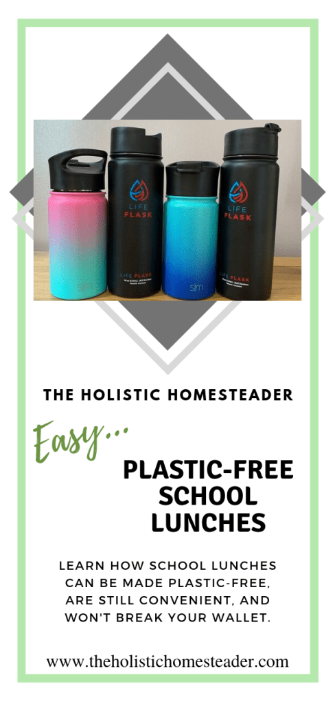 Easy Plastic Free School Lunches