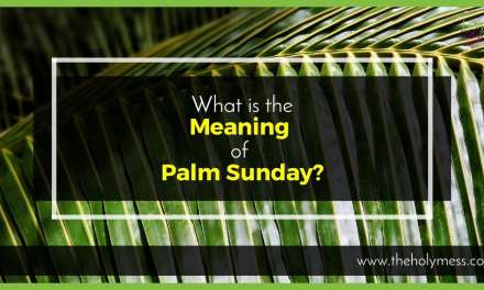 What is the Meaning of Palm Sunday?