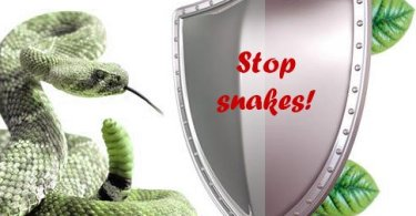 stop snakes protection