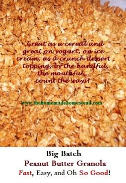 Peanut Butter Granola Graphic