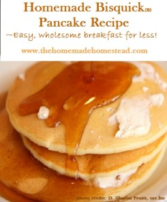 Bisquick Pancake Recipe