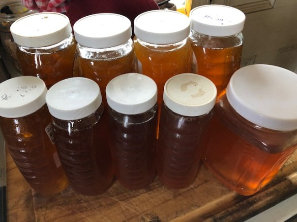 Local Raw Honey - Homegrown Honey