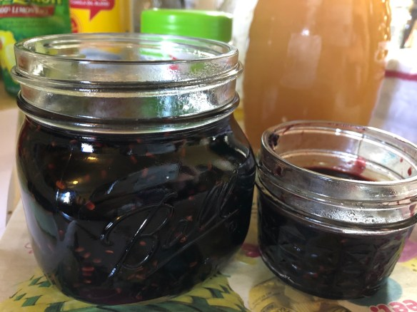 Elderberry jam in jars