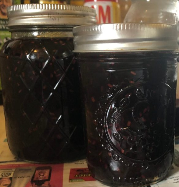 Elderberry Jam Jars