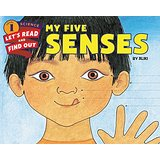 Exploring the Five Senses... and a few more - A Kindergarten Unit