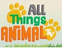 All things Animal TV