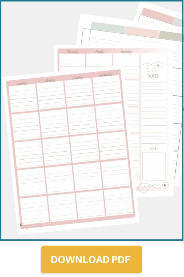 Undated Family Calendar & Lesson Planner