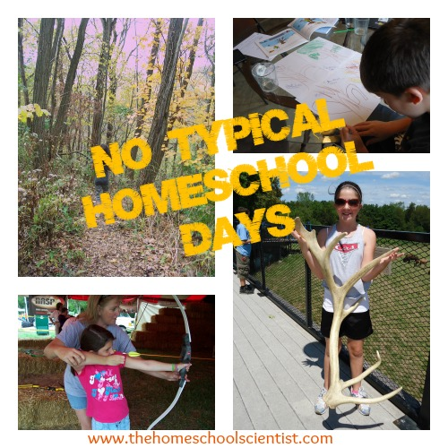 There are no typical homeschool days - The Homeschool Scientist