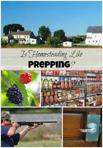 homesteading preparedness