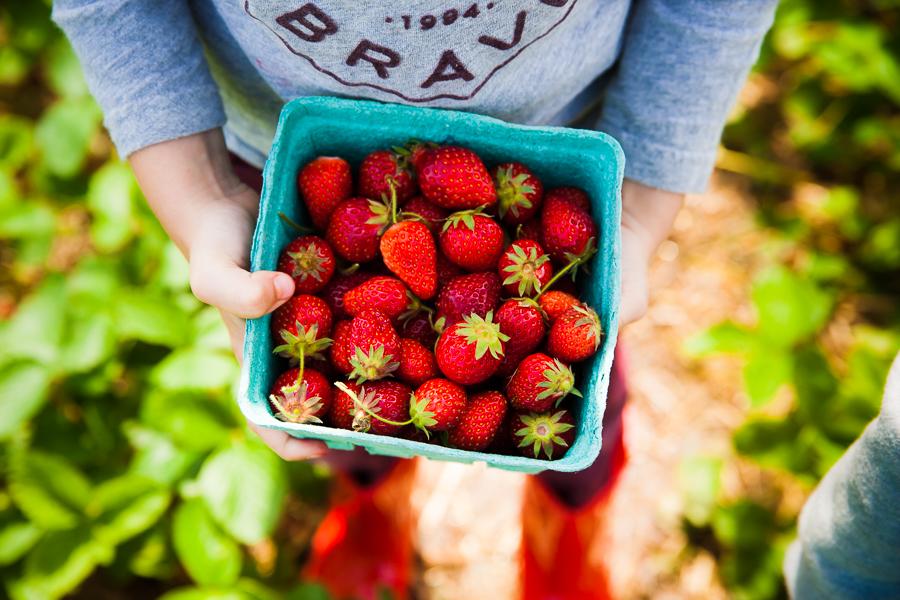strawberries-11