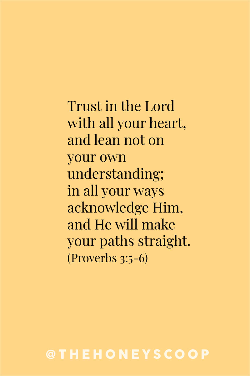Why The Driver Of Your Life Can Be Trusted at the Honey Scoop - trusting god, trusting god quotes, trusting god in hard times, trusting gods plan