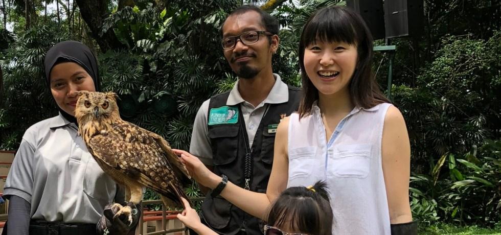 bird's eye tour singapore family blogger review