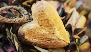 heart, wooden heart, hydrangea