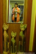 Cute cats on a door