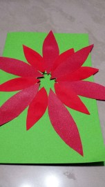 Finished poinsettia flower design