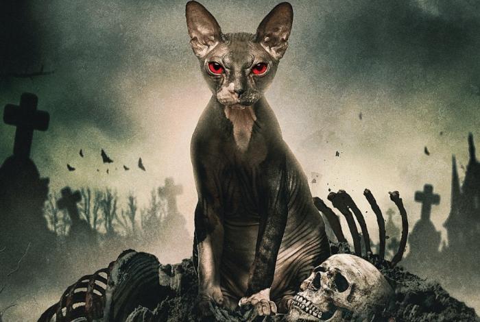 Pet-Graveyard-movie-2019-thumb-700xauto-207585