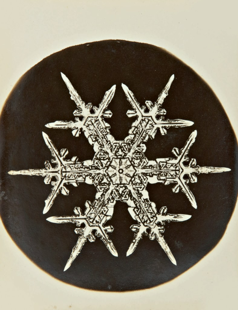 One of a group of ten images of snowflakes captured between the late 1890s and the 1920s by photographer Wilson Bentley.