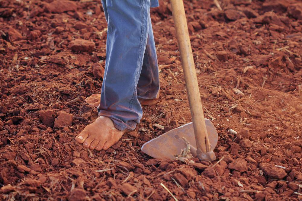 benefits of going barefoot, blue jeans, bare feet in garden by hoe