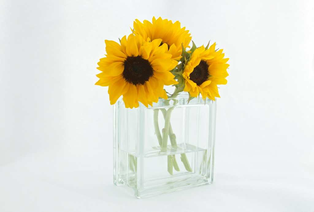 Vase, sunflowers