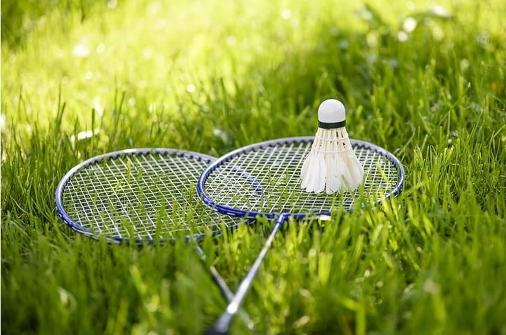 Badminton, backyard