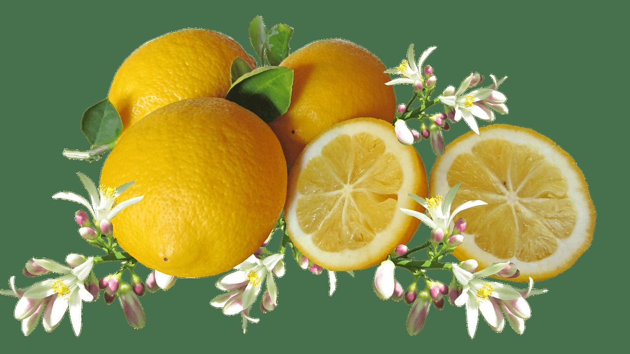Lemon, citrus