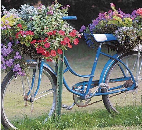 Bicycle, planter