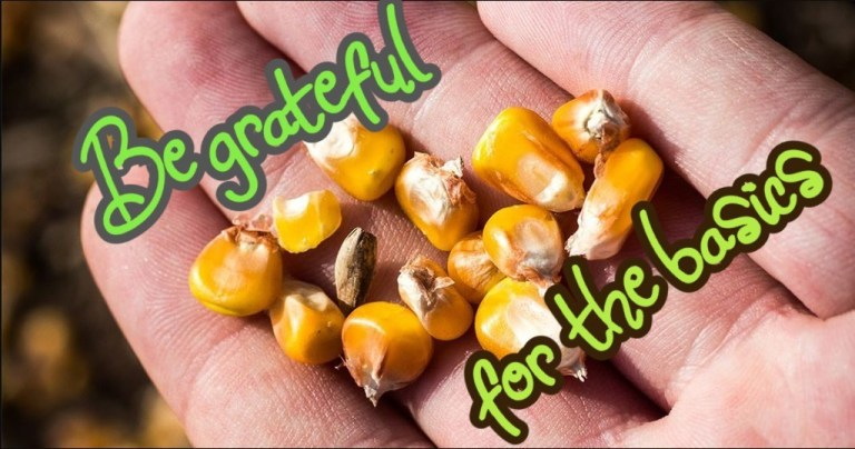 Challenge Hand with corn -- The Hot Mess press