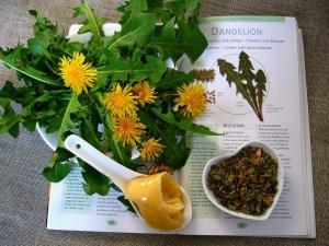 Natural remedies -- The Hot Mess Press