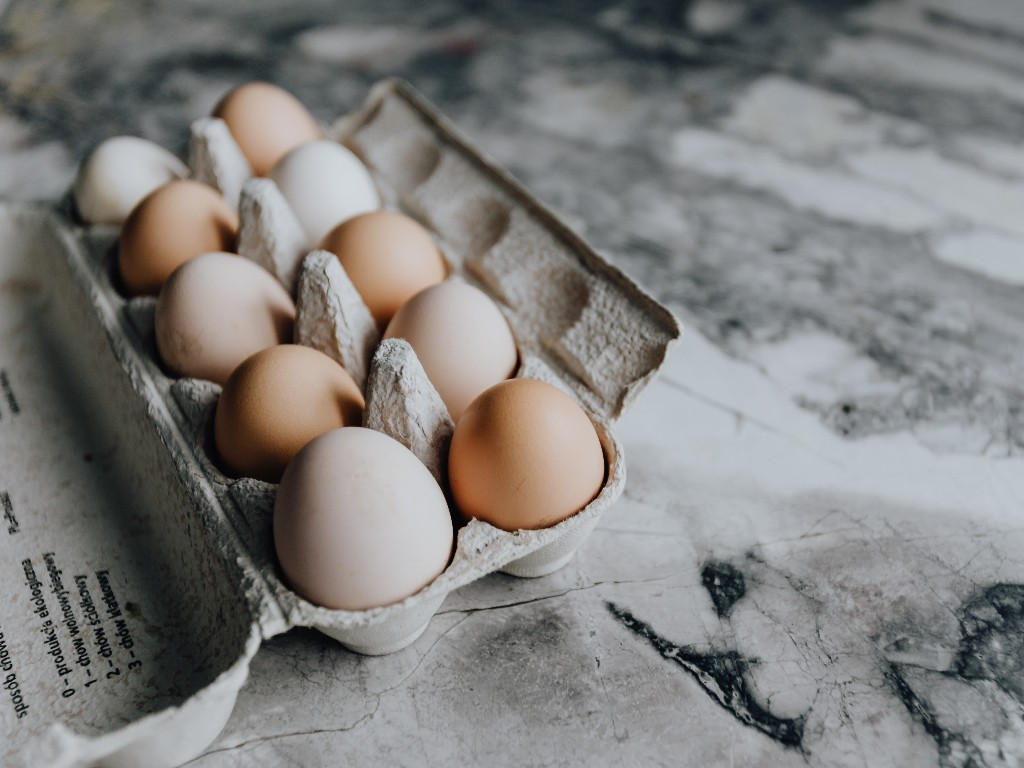 Eggs storage