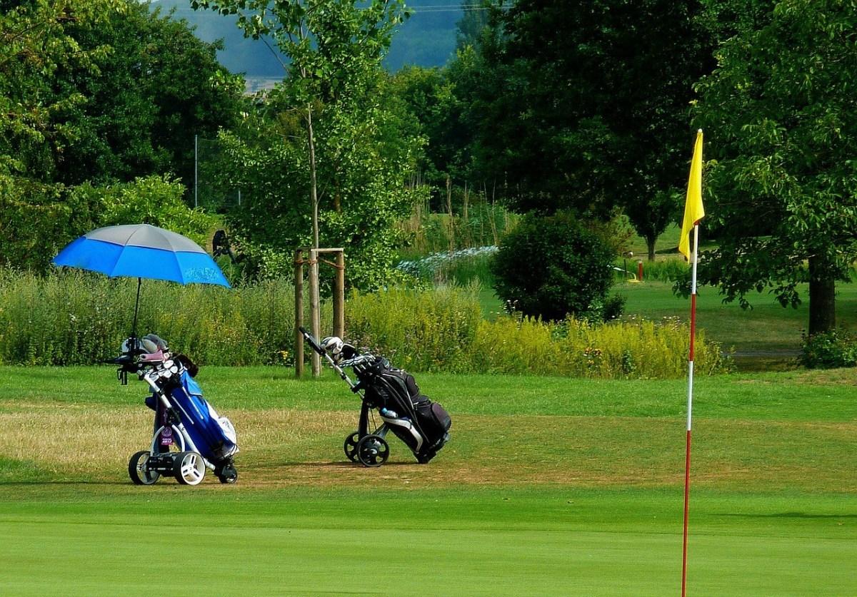 2 Golf carts