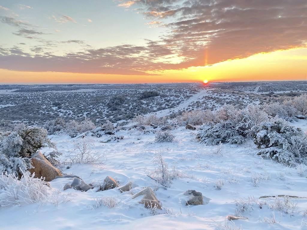 Extreme weather Texas Deep Freeze