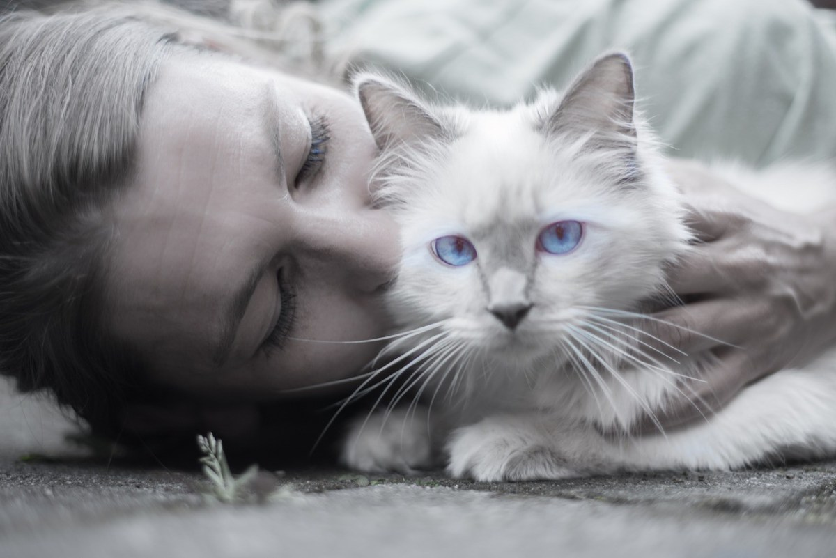Woman cuddle cat