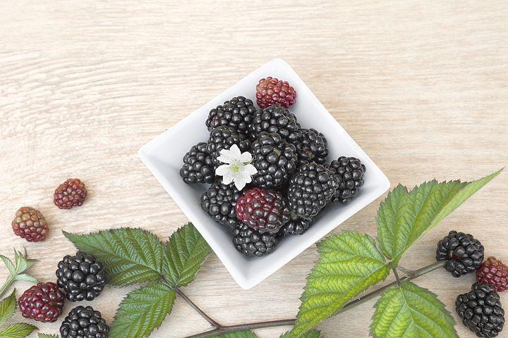 white dish, blackberries, small white flower, green leaves