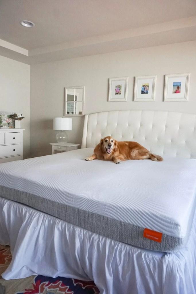 hybrid mattress, best mattress, mattress delivery, comfortable mattress,  online mattress, free