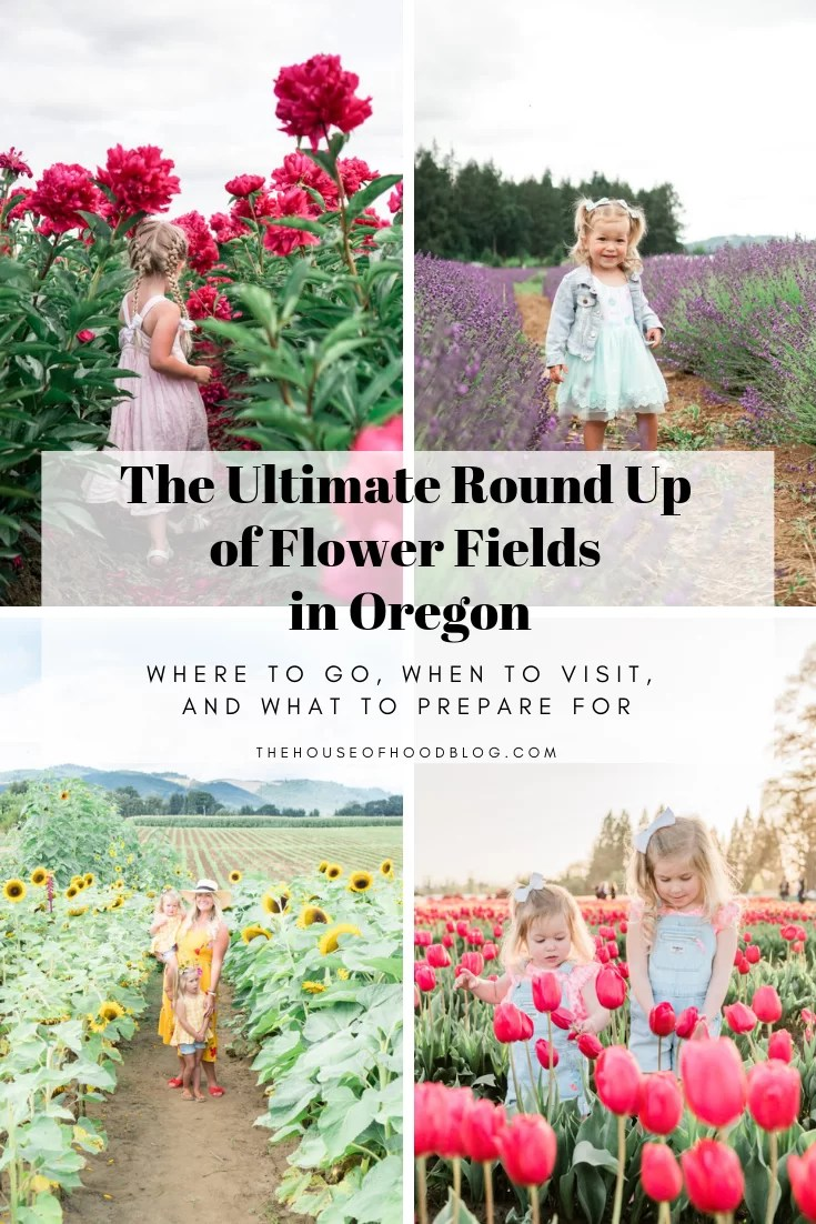 The Ultimate Round Up Of Flower Fields Around Portland