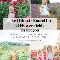 The Ultimate Round Up of Flower Fields Around Portland Oregon