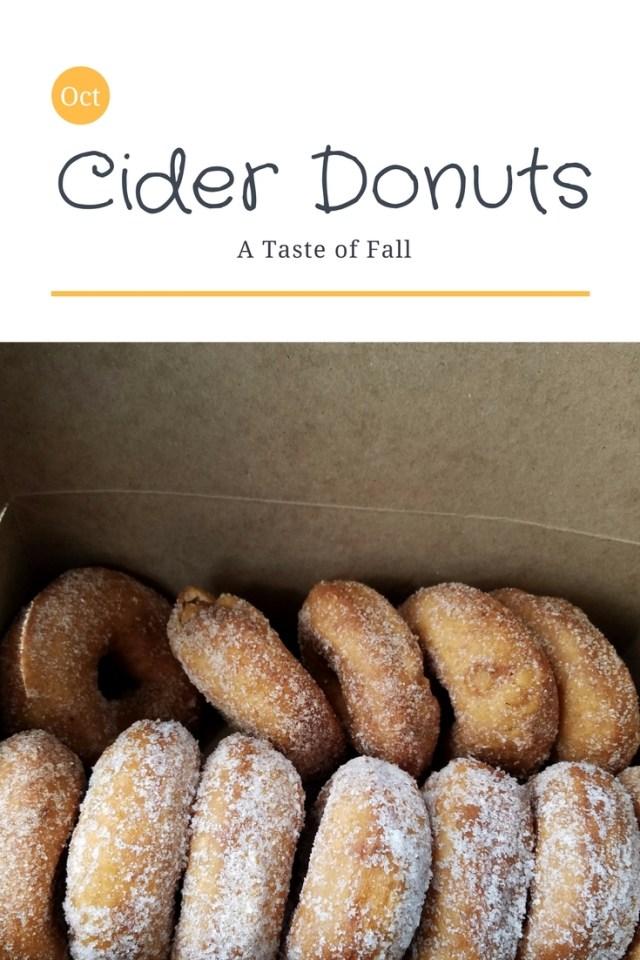 Cider Donuts of Massachusetts. Yum!