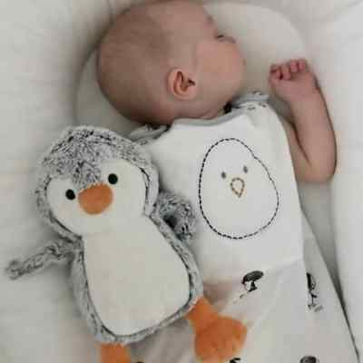 10 Tips to Get Your Baby to Sleep 10+ Hours
