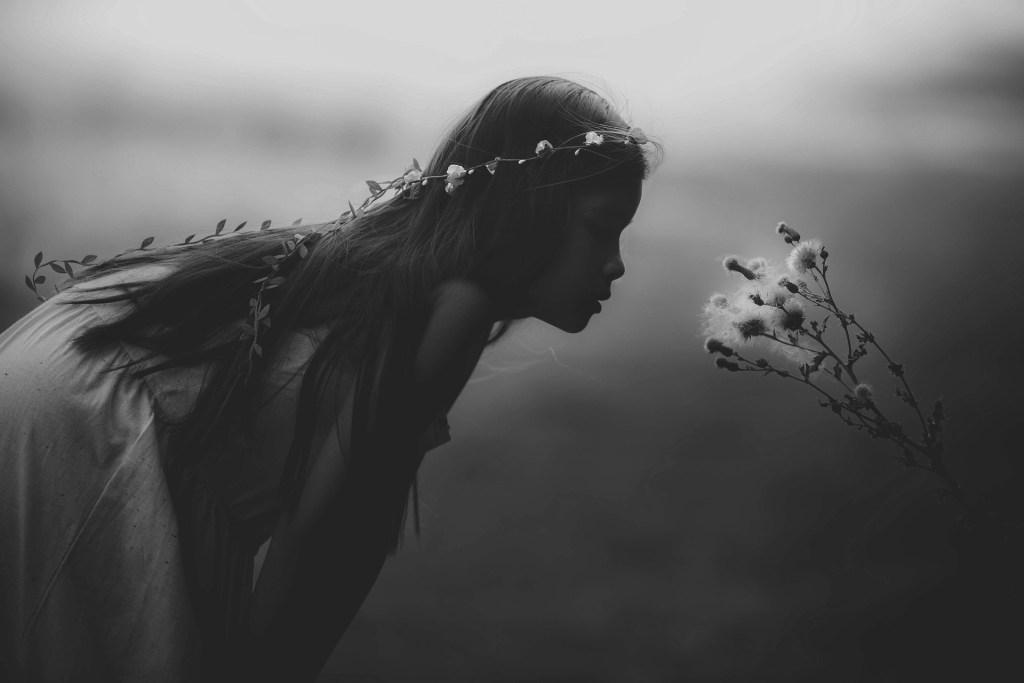 Fae Fairy Amelia Wyrd The House of Twigs